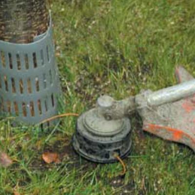 ArborGard+ Boomstambeschermer