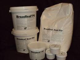 Broadleaf Regular `a 10 kg